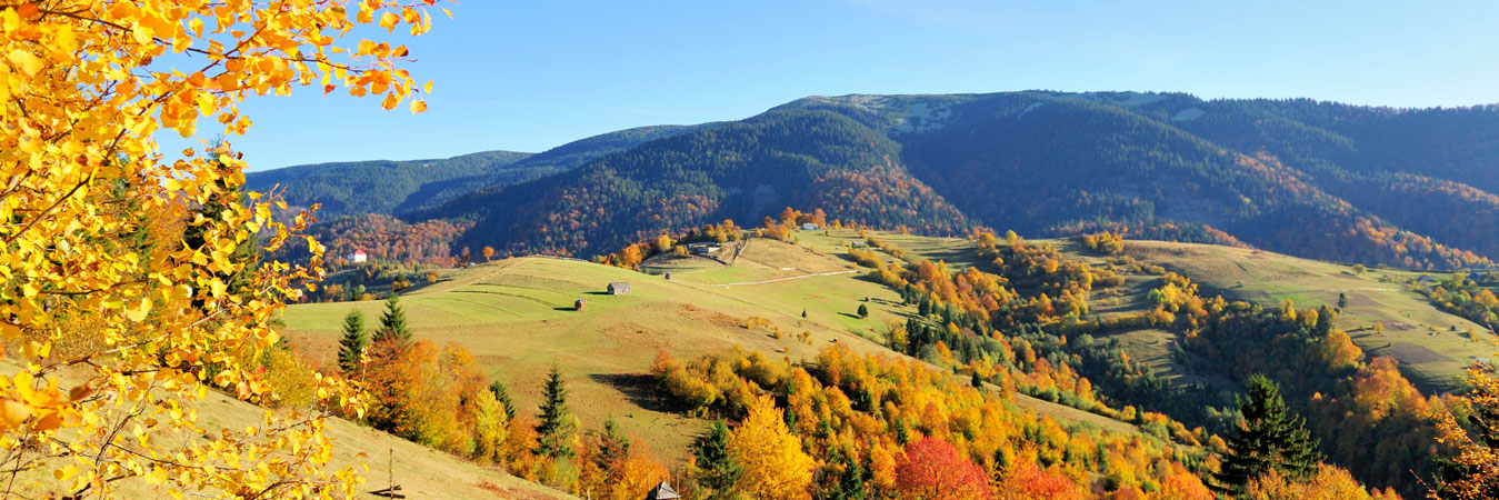 Breathtaking beauty during Steamboat fall season